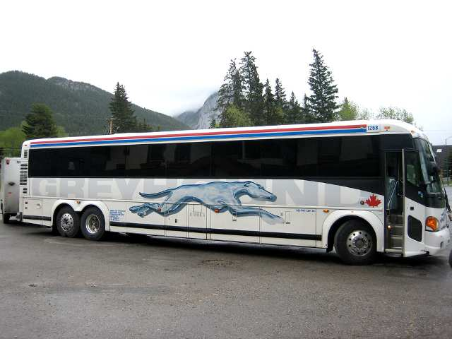 Greyhound Bus Ticket Discounts